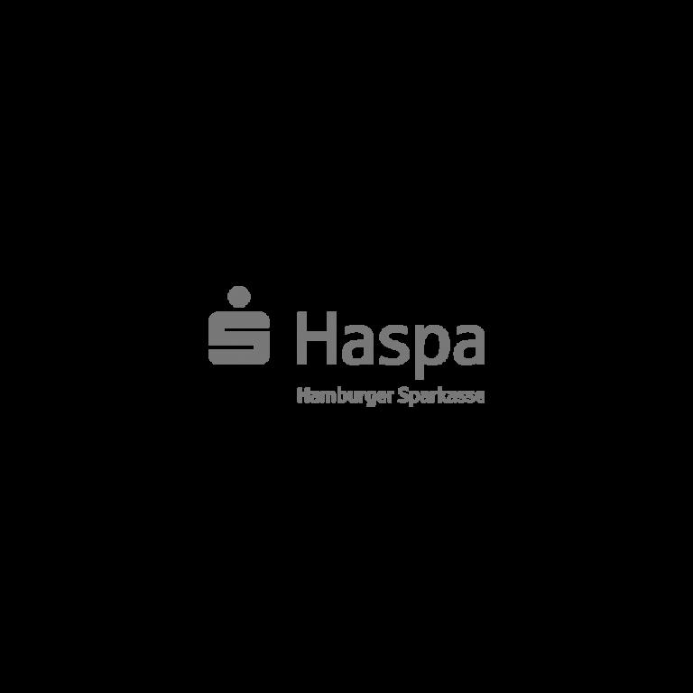 Haspa_grau-1.png