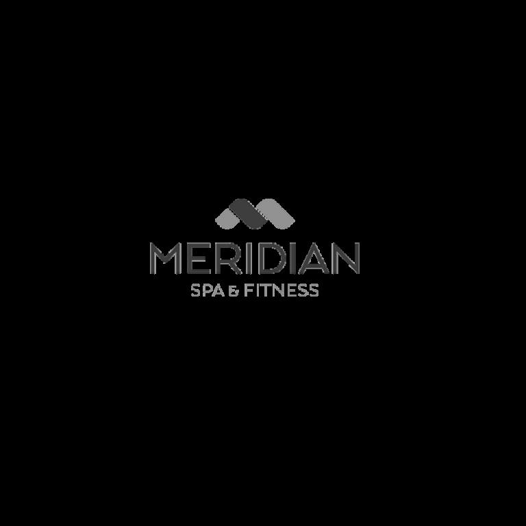 Meridian_grau-1.png