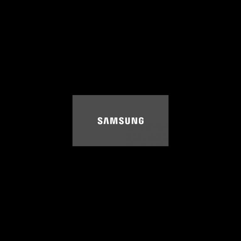 Samsung_grau-1.png